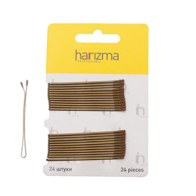 Невидимки прямые Harizma Professional 60мм 24 шт коричневые: фото